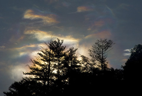July Morning Sky