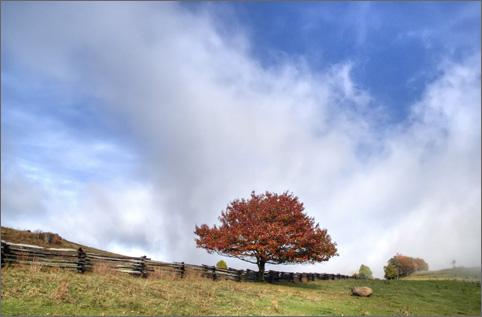 Blue Ridge Parkway Fall Foliage Floyd County Virginia 2007