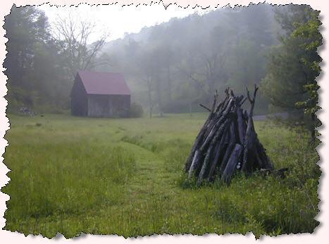 winterwood2.jpg