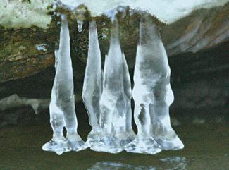 icegnomes1.jpg