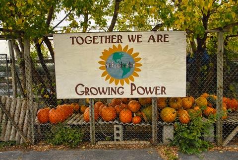 Will Allen's Growing Power in Milwaukee