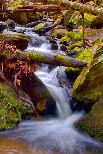 Nameless Creek