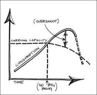 Tipping points and overshoot