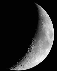moonCresent240-1