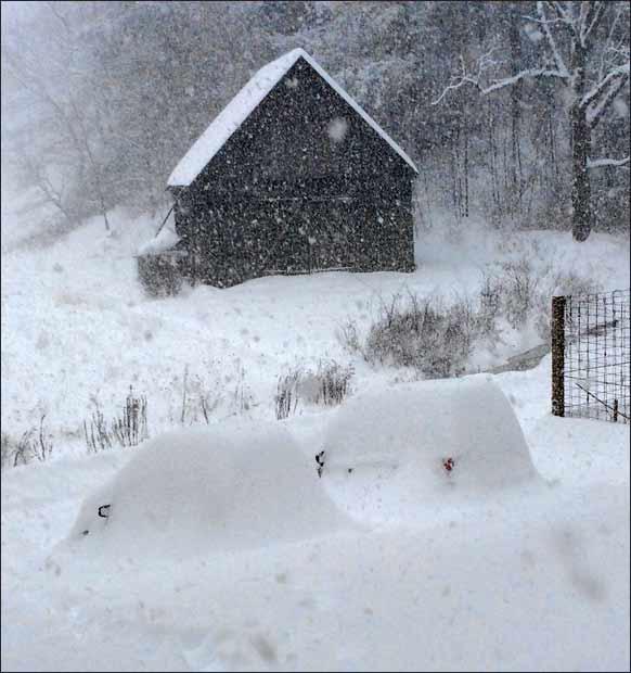 Snow ImMobiles