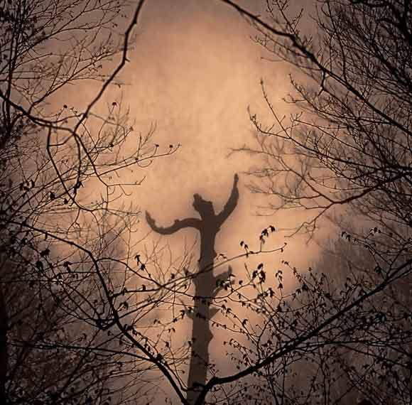 treedancer4_580