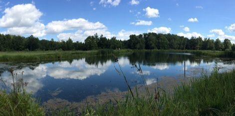 ponds3